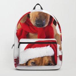 Holiday Christmas Dog Dachshund Cat Christmas Orna Backpack