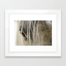 Stallions know Framed Art Print