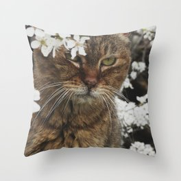Autunno in primavera-Autumn in spring Throw Pillow