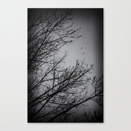 Winter Noir Canvas Print