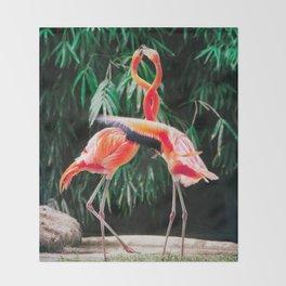 Flamingo Dance (Color) Throw Blanket