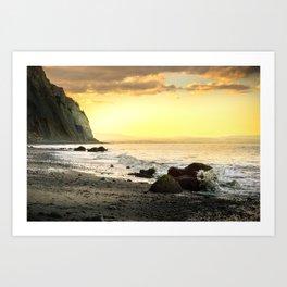 Beachy sunset Art Print