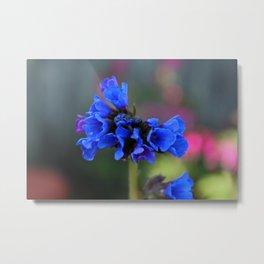 Bonny Blue Metal Print