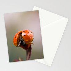Taking Off Stationery Cards