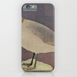 Vintage Print - Birds and Nature (1901) - Ring-billed Gull iPhone Case