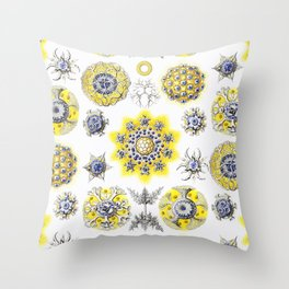 Ernst Haeckel - Polycyttaria Throw Pillow