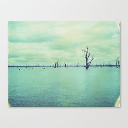 Lake Mulwala Polaroid Canvas Print