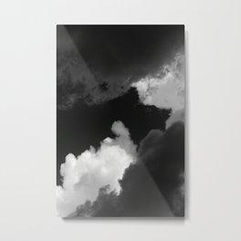 SALT / PEPPER Metal Print