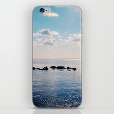 Take the Stepping Stones iPhone & iPod Skin