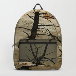 The Beauty Of A Travertine Terrace Backpack