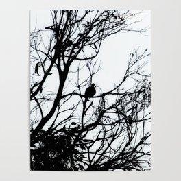 Dove Bird & Winter tree Silhouette Poster