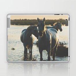 Camargue Horses III ... Laptop & iPad Skin