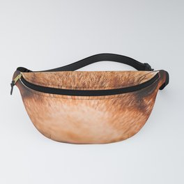 Red fox 2 Fanny Pack