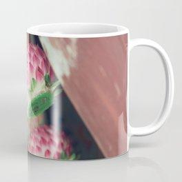 Lotus Lanterns Coffee Mug