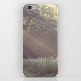 stream. iPhone Skin