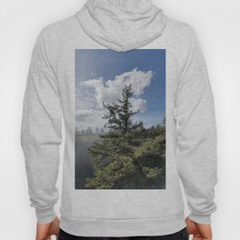 Gnarled Tree Against Blue Sky and Clouds, Beautiful Landscape of Old Tree Hoody