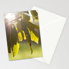 leaves at sunset Stationery Cards