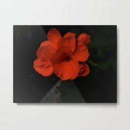 Flower Of Her Flames Metal Print