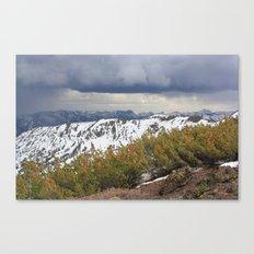 Sonora Peak Canvas Print
