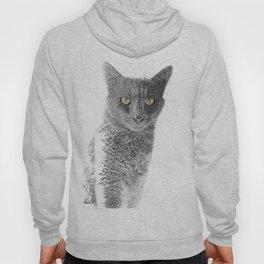 Wolf the Cat 439 2 Hoody