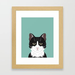 Quinn - Cute black and white cat tuxedo cat gifts for cat lady gift ideas cell phone case with cat Framed Art Print