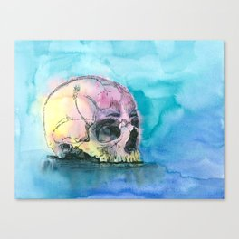 Colorful Skull 2 Canvas Print