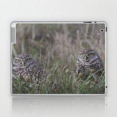 Burrowing Owl pair Laptop & iPad Skin