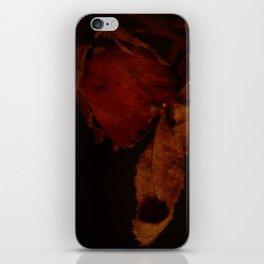 Some Rose iPhone Skin