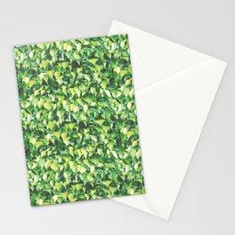 MILLION DOLLAR MIAMI HEDGE Stationery Cards
