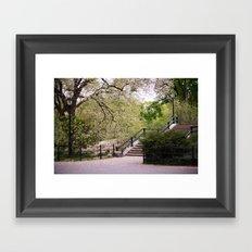 Spring in Central Park. Framed Art Print