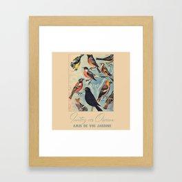 French Birds Framed Art Print