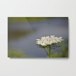 Coming In For A Landing Metal Print