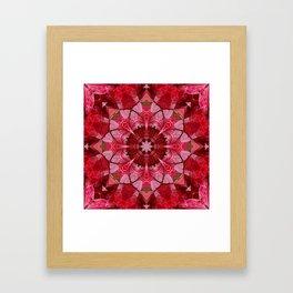 Cranberrybush Viburnum mandala Framed Art Print