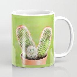Prickly cactus flowering pink flowerets Coffee Mug