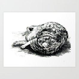 Schlafende Katze.Sleeping cat. Art Print