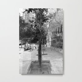 again, pare down, prune away, clean up; Metal Print