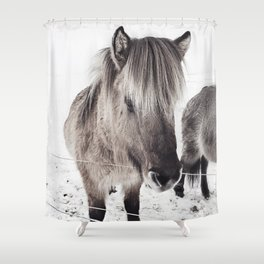 snowy Icelandic horse bw Shower Curtain