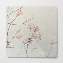 Pink Dogwood Flower Botanical Metal Print