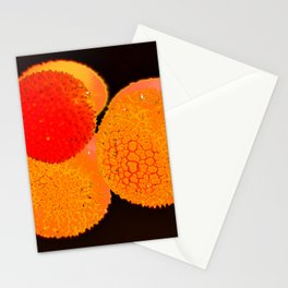Lychee 2 Stationery Cards
