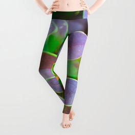 Vibrant green and purple leaves Leggings