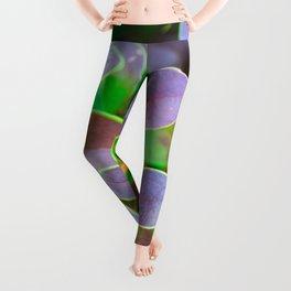 Vibrant green and purple leaves Leggings
