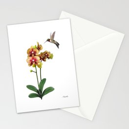 Hummingbird & Phalaenopsis Stationery Cards