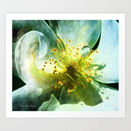 Yellow Rose Center with smokey overlay by CheyAnne Sexton Art Print