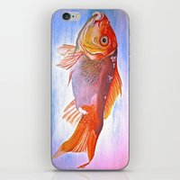 goldfish iPhone & iPod Skins featuring Goldfish by Jaime Viens