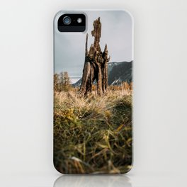 Mystical Old Growth iPhone Case