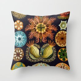 Ernst Haeckel Sea Squirts Ascidiae Black Background Throw Pillow