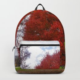 NYC Fall Tree-pt.2 Backpack