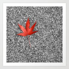 red autumn leaf Art Print