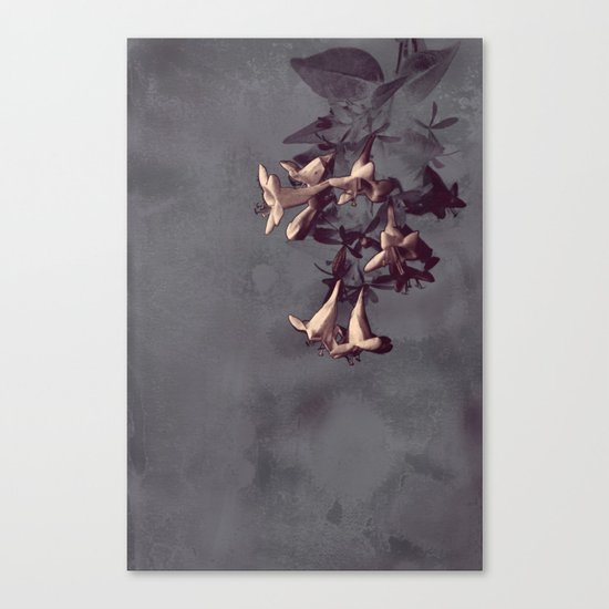 Evening Flowers Canvas Print