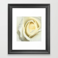 White Rose Of The Parking Structure Framed Art Print